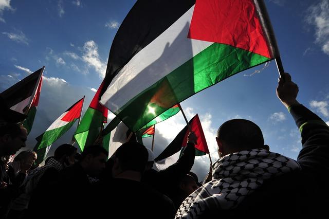 palestine-flagcampaign