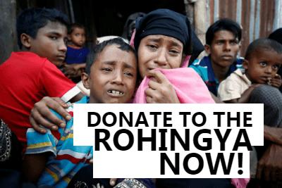 rohingyawebsite