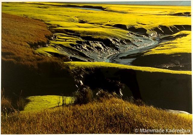 0008663_stream-carving-through-landscape